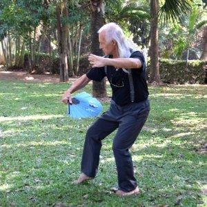 Méditation, yoga et arts martiaux - Laos