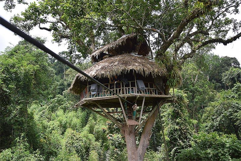 Cabanon dissimulé dans les arbres, hébergement atypique au Laos