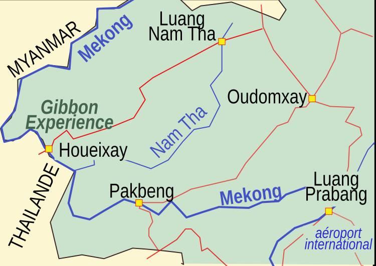 Emplacement de la Gibbon Experience au Laos