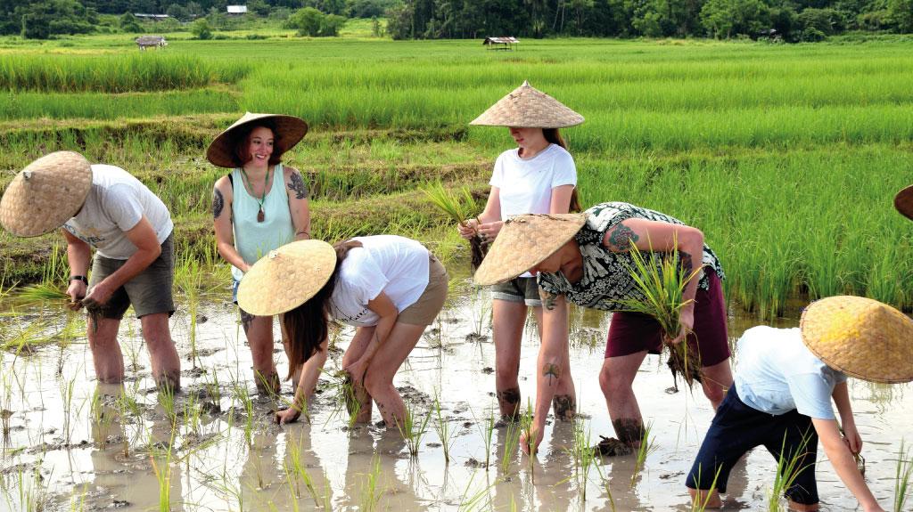 Voyager en famille au Laos