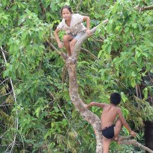 Bolovens, une richesse ethnique - Laos