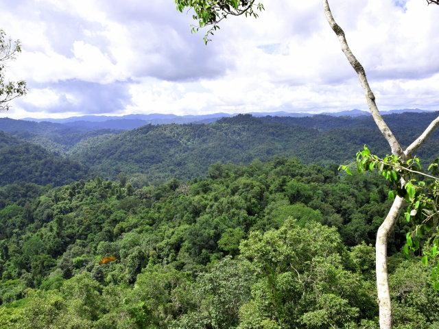Logement de catégorie atypique au Laos - AGPE