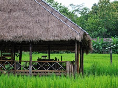 Hôtel de catégorie atypique au Laos - akmu