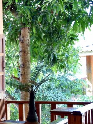 Hôtel de catégorie globe trotter au Laos - gpik