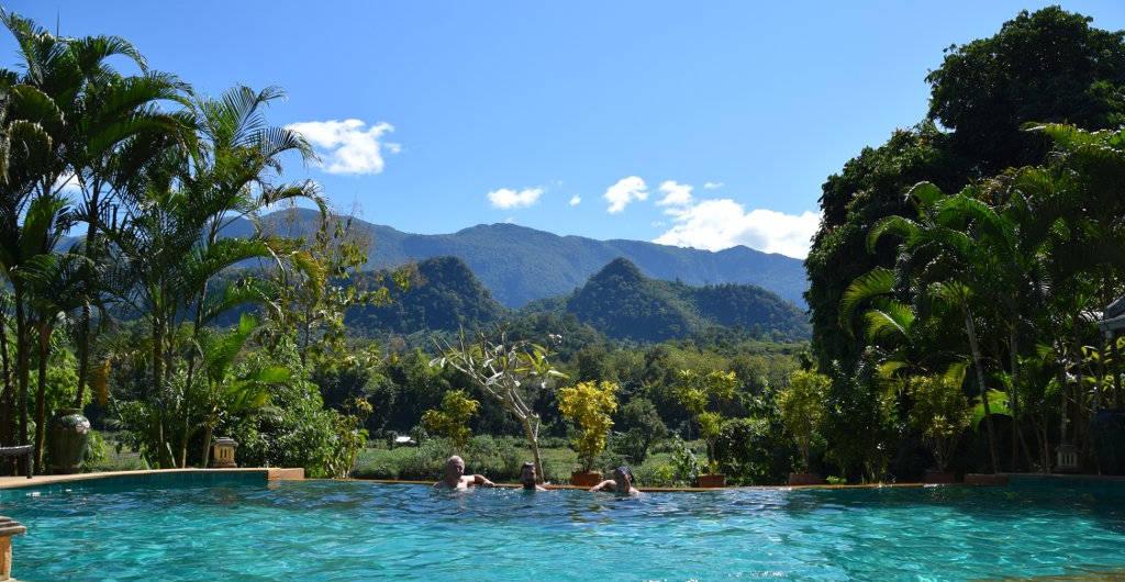 Vu sur la jungle de la piscine d'un hôtel au Laos.