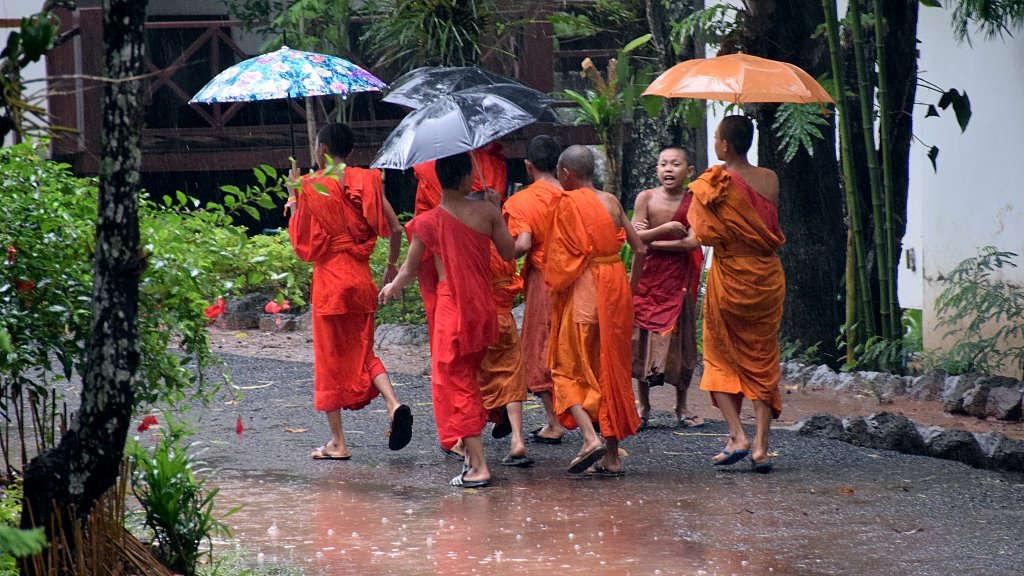 Moines sous la pluie au Laos.
