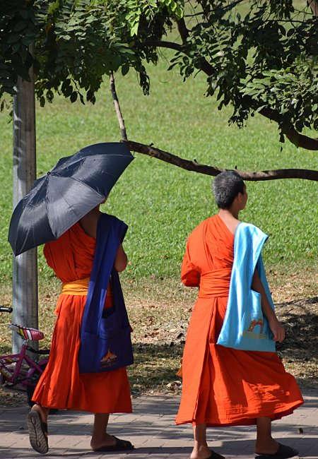 Moines sous le soleil au Laos.